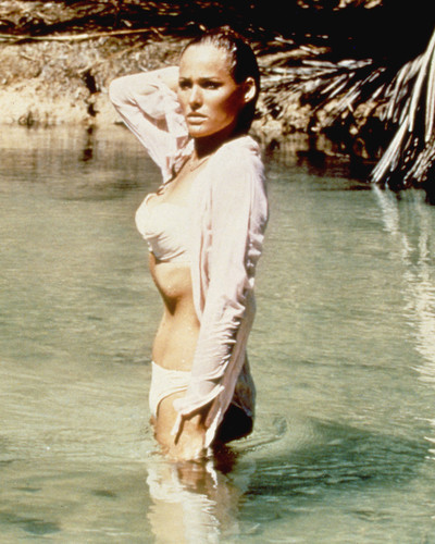 This is an image of Premium Photograph & Poster of Ursula Andress 295608