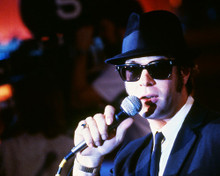 This is an image of Premium Photograph & Poster of The Blues Brothers 295611