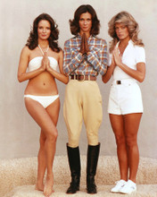 This is an image of Premium Photograph & Poster of Charlies Angels 296112
