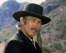 This is an image of Photograph & Poster of James Coburn 295714