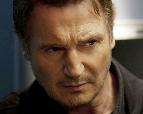 This is an image of Photograph & Poster of Liam Neeson 295724