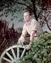 This is an image of Premium Photograph & Poster of Richard Widmark 297255