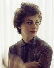 This is an image of Premium Photograph & Poster of Sophia Loren 296010