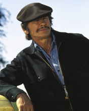 This is an image of Photograph & Poster of Charles Bronson 296062