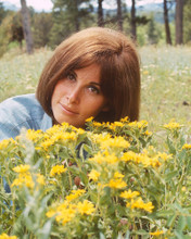 This is an image of Photograph & Poster of Stefanie Powers 296196