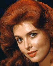 This is an image of Premium Photograph & Poster of Tina Louise 297476