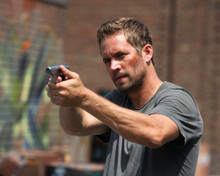 This is an image of Photograph & Poster of Paul Walker 297175