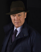 This is an image of Photograph & Poster of James Spader 297915