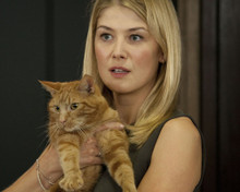 This is an image of Photograph & Poster of Rosamund Pike 297977
