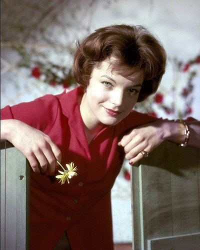 This is an image of Photograph & Poster of Romy Schneider 298006