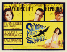 This is an image of Vintage Reproduction of Suddenly Last Summer 297343