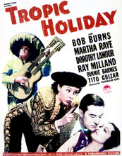 This is an image of Vintage Reproduction of Tropic Holiday 296984