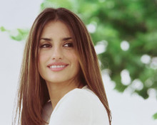 This is an image of Photograph & Poster of Penelope Cruz 243601