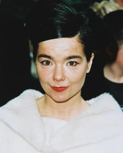 This is an image of Photograph & Poster of Bjork 245856