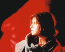 This is an image of Photograph & Poster of Irene Jacob 214745