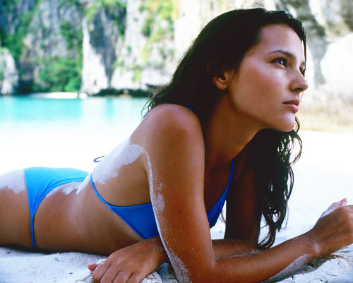 This is an image of Photograph & Poster of Virginie Ledoyen 241313