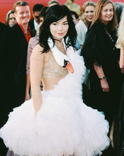 This is an image of Photograph & Poster of Bjork 246366