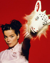 This is an image of Photograph & Poster of Bjork 287505