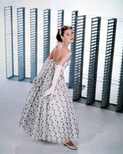 This is an image of Photograph & Poster of Audrey Hepburn 298169