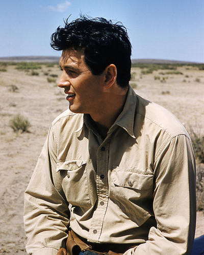 This is an image of Photograph & Poster of Rock Hudson 285594