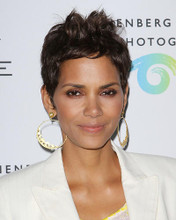 This is an image of Photograph & Poster of Halle Berry 286010