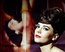 This is an image of Photograph & Poster of Natalie Wood 286152