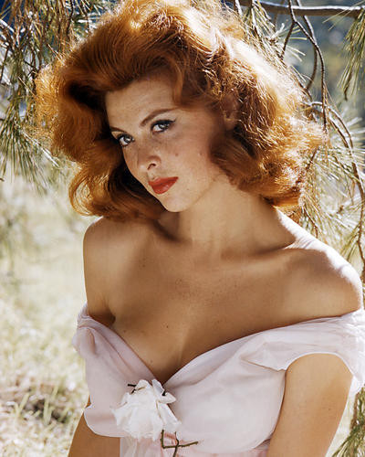 This is an image of Photograph & Poster of Tina Louise 286324