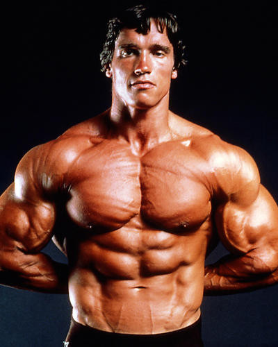 This is an image of Photograph & Poster of Arnold Schwarzenegger 286329