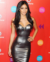 This is an image of Photograph & Poster of Nicole Scherzinger 286671