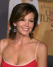 This is an image of Photograph & Poster of Diane Lane 286686