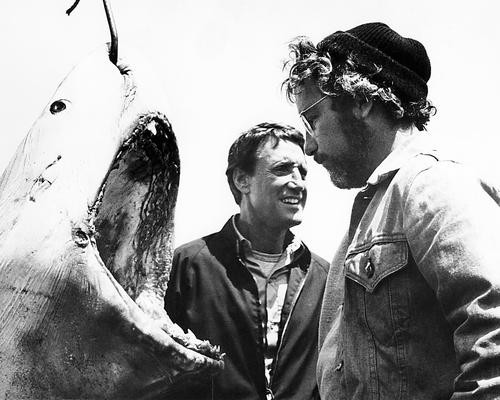 This is an image of Photograph & Poster of Jaws 195917