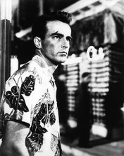 This is an image of Photograph & Poster of Montgomery Clift 195950