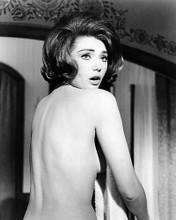 This is an image of Photograph & Poster of Sylva Koscina 196010