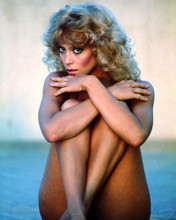 This is an image of Photograph & Poster of Judy Landers 286804