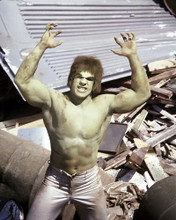This is an image of Photograph & Poster of The Incredible Hulk 286823