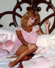 This is an image of Photograph & Poster of Judy Landers 286839