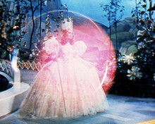 This is an image of Photograph & Poster of The Wizard of Oz 286842