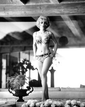 This is an image of Photograph & Poster of Stella Stevens 196140