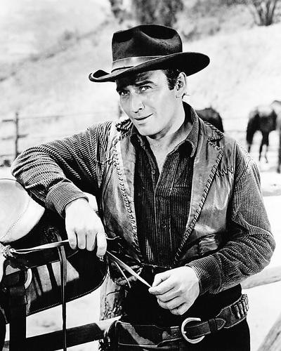 This is an image of Photograph & Poster of James Drury 196186