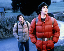 This is an image of Photograph & Poster of American Werewolf in London 286487