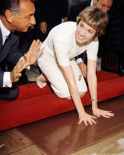 This is an image of Photograph & Poster of Julie Andrews 286498