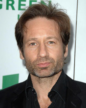 This is an image of Photograph & Poster of David Duchovny 286743