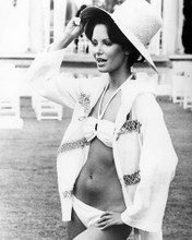 This is an image of Photograph & Poster of Jaclyn Smith 196058