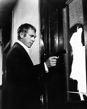 This is an image of Photograph & Poster of Steve McQueen 196130