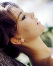 This is an image of Photograph & Poster of Natalie Wood 286942