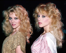 This is an image of Photograph & Poster of Audrey Landers and Judy Landers 286971