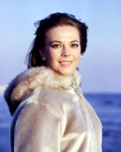 This is an image of Photograph & Poster of Natalie Wood 286973