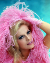 This is an image of Photograph & Poster of Virna Lisi 286932