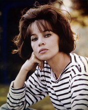 This is an image of Photograph & Poster of Leslie Caron 287424