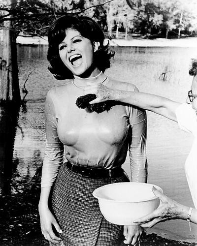 This is an image of Photograph & Poster of Claudia Cardinale 196595